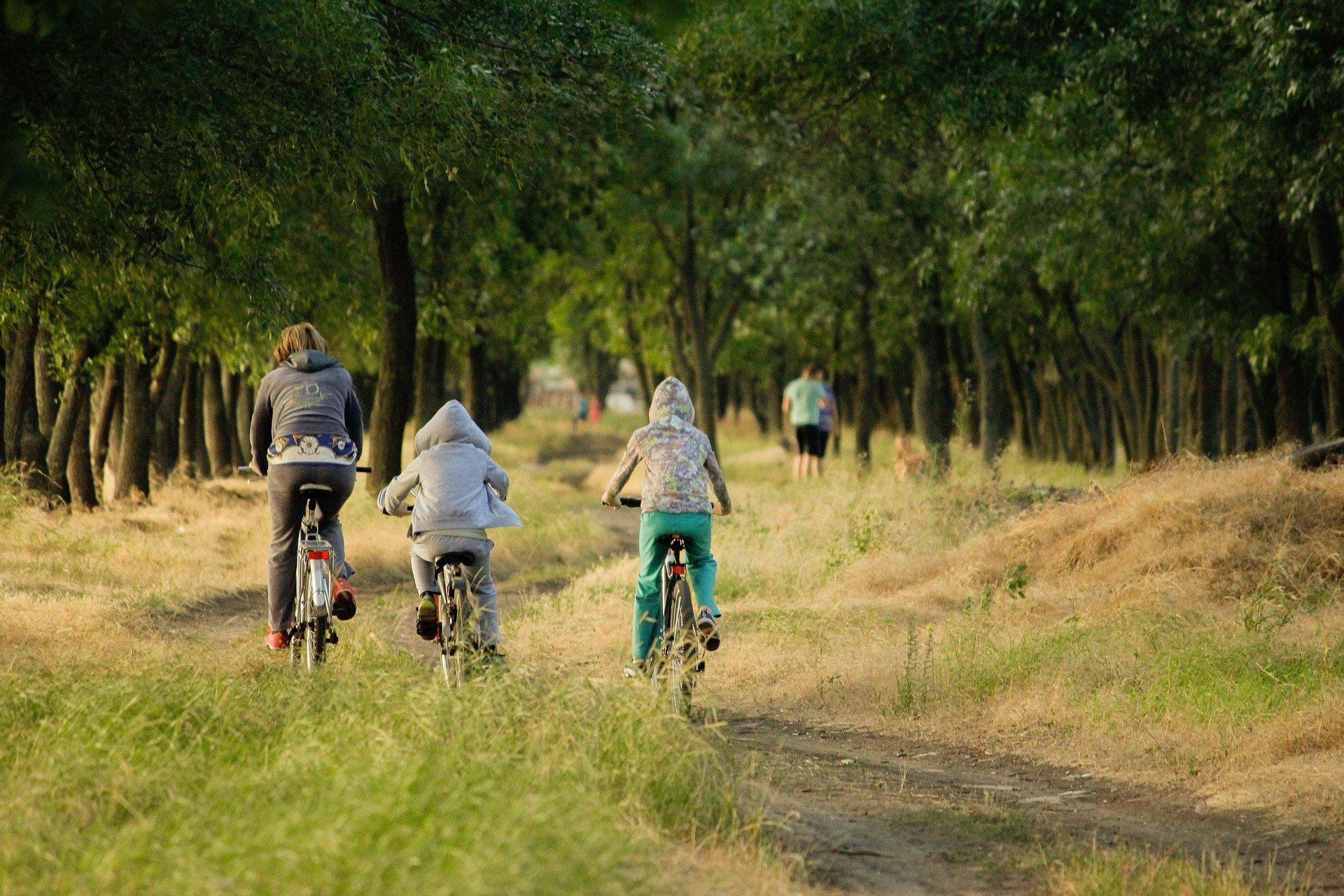 location-vélo-lemans-velnature